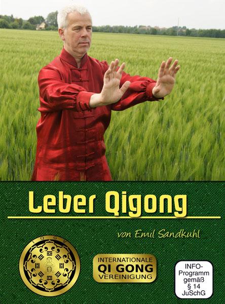 Leber Qigong DVD